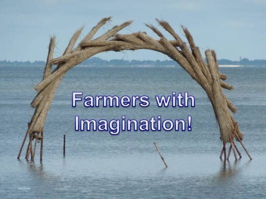 The Farmers With Great Imagination