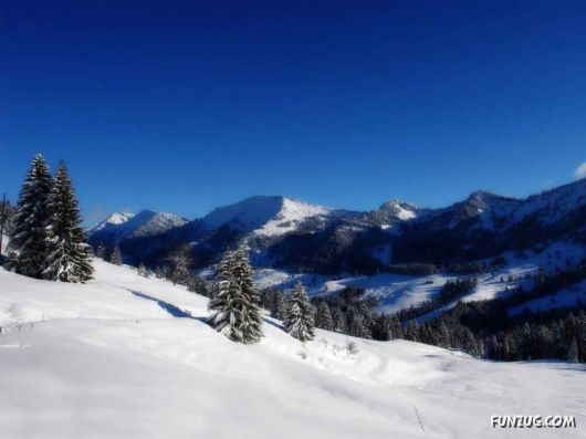 Click to Enlarge - Beautiful Winter Special Wallpapers