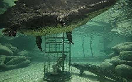 Scariest Human Cage Attraction Photos