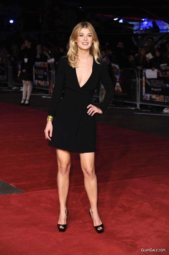 Gorgeous Rosamund Pike At 127 Hours Premiere