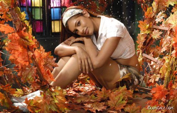 Pretti Bhandari Latest Stills