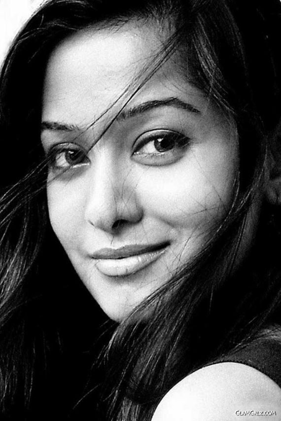 Tollywood Beauty Preetika Rao