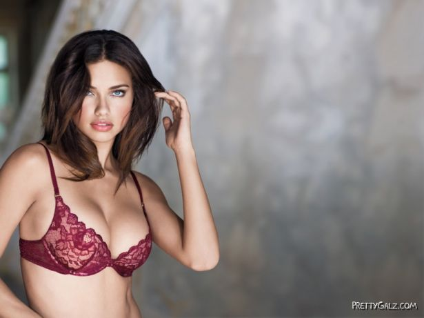Adriana for Victoria's Secret Holiday Wish Book